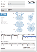 aycan workstation pi-rads report