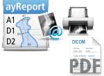 aycan workstation report distribution export