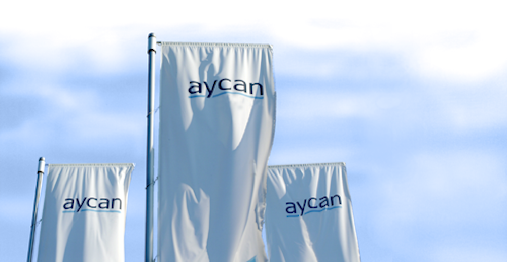 aycan Medical Systems corporate flags